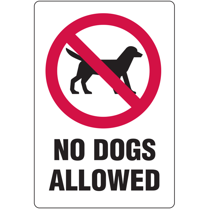 No Dogs Allowed - With Picto. - Metal, 300 X 450mm - Image - 1